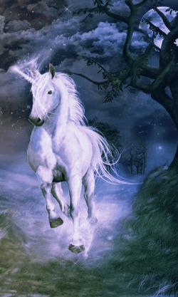 2a5f8a509387875ee8b1f7f033d6af51_unicorn_night_live_wallpaper-in_this_live_wallpaper_a_beautiful_white_fantasy_unicorn_in__night_alone_with_moving_clouds_and_lights