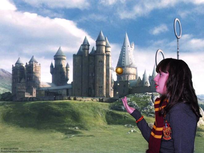castle_Hogwarts_WB Kopie.jpg